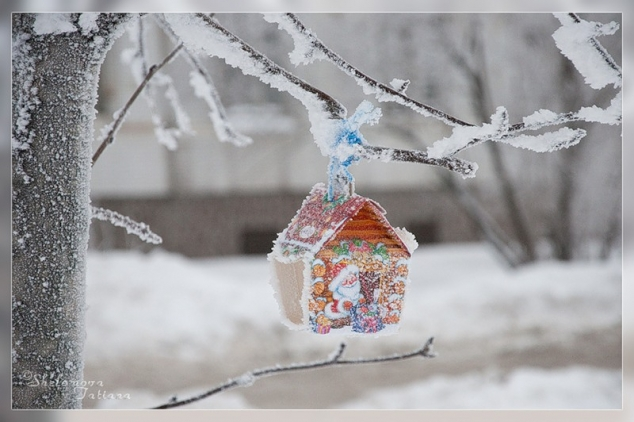 Светлана Павлова. Нежное снежное